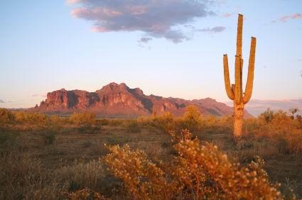 Arizona-desert