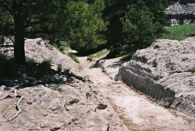 oregon_trail_wagon_ruts_-_panoramio