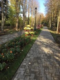 Iasi Botanical Garden 3