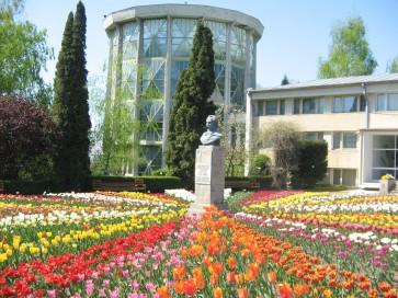 Iasi Botanical Garden - official